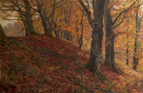 At the Fall of Leaf, Arundel Park, Sussex (Woodland Scene in Autumn), 1883 (oil on canvas) William Samuel Jay (c.1843-c.1933)  Nottingham City Museums and Galleries (Nottingham Castle)  Bridgeman Images