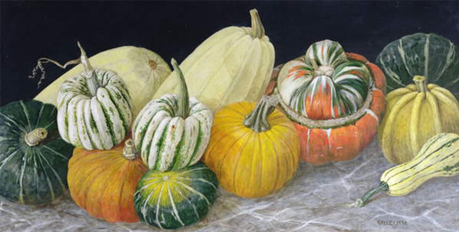 Pumpkins and Squashes, 1996 (acrylic on board), Galley / Private Collection / Bridgeman Images