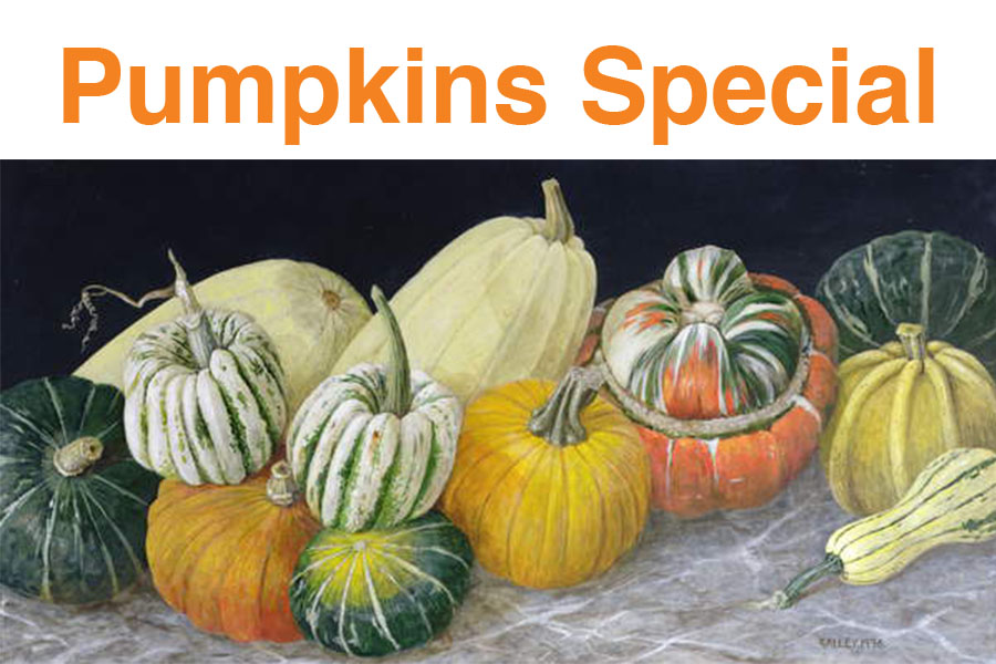 Fall, Pumpkins Special - Pumpkins and Squashes, 1996 (acrylic on board), © Galley  / Bridgeman Images