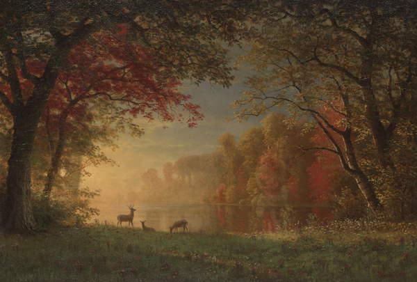 Indian Sunset- Deer by a Lake, c.1880-90 (oil on canvas), Bierstadt, Albert (1830-1902)  Yale University Art Gallery, New Haven, CT, USA  Bridgeman Images