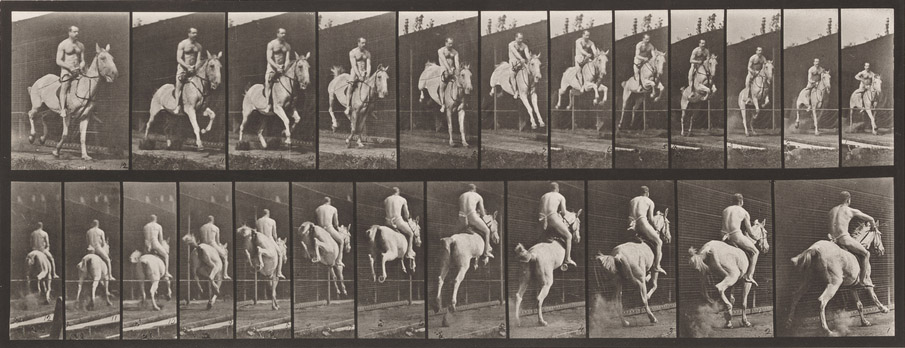 Plate 646. Jumping a Hurdle; Saddle; Rider, 105, Nude; 1885 (collotype on paper), Eadweard Muybridge, (1830-1904) / Addison Gallery of American Art, Phillips Academy, Andover, MA, USA / gift of the Edwin J. Beinecke Trust / Bridgeman Images 3950622