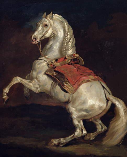 Napoleons Stallion, Tamerlan (oil on canvas), Gericault, Theodore (1791-1824)  Musee des Beaux-Arts, Rouen, France  Bridgeman Images