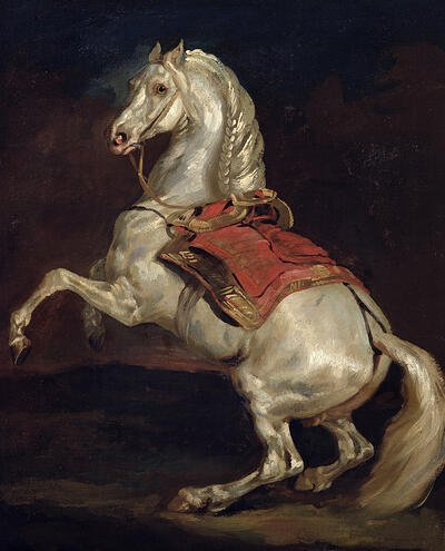 Image of Napoleon's Stallion Tamerian (oil on canvas), Gericault, Theodore (1791 - 1824) / Musee des Beaux - Arts, Rouen, France © Bridgeman Images