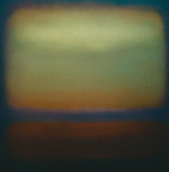 Nectarine, 2006, (oil on canvas), Lee Campbell / Private Collection
