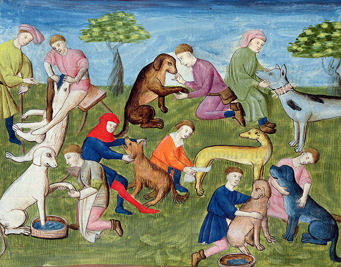 Caring for the Hounds, from the 'Livre de la Chasse' by Gaston Phebus de Foix (1331-91) (vellum) French School, (15th century) / Musee Conde, Chantilly, France / Bridgeman Images