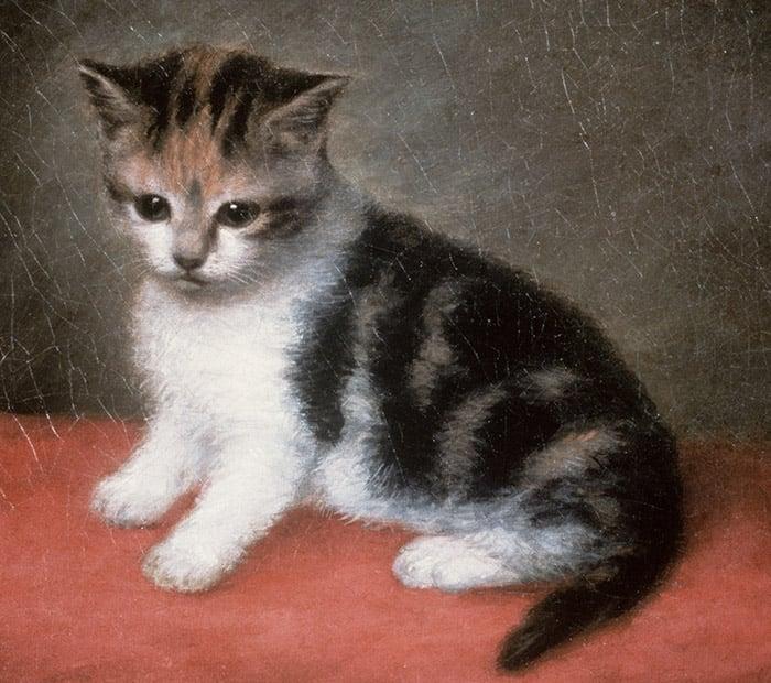 Miss Ann White's Kitten, 1790 by George Stubbs, Roy Miles Fine Paintings