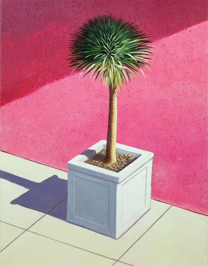 Small palm, 1995 (acrylic on canvas)