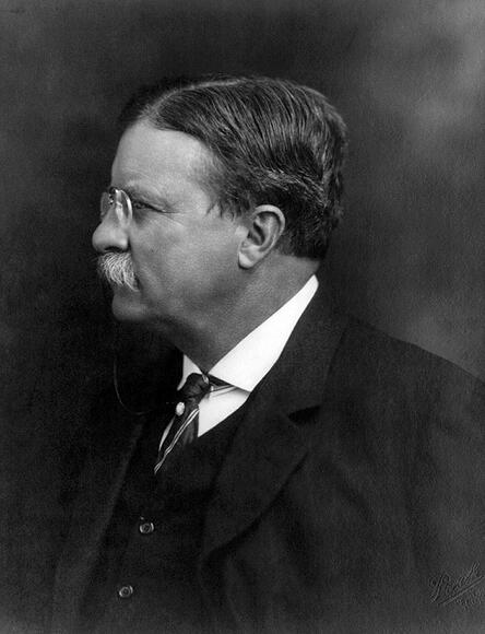 1576693 President Theodore Roosevelt, 1913; (add.info.: President Theodore Roosevelt. Roosevelt (1858-1919) was an American politician, author, naturalist, explorer, and historian who served as the 26th President of the United States.); Universal History Archive/UIG; out of copyright.