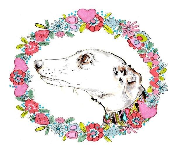 colouring-book-silvertips-greyhound-dog