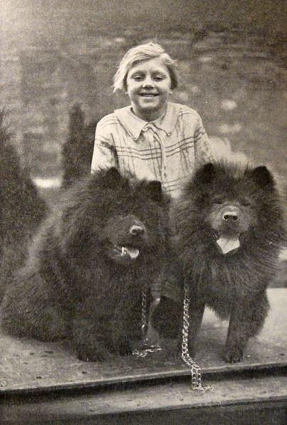 dog-chow-child-pets-animals
