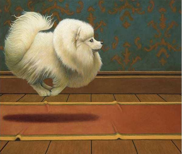 dog-gavin-watson-puppy-pet-animal
