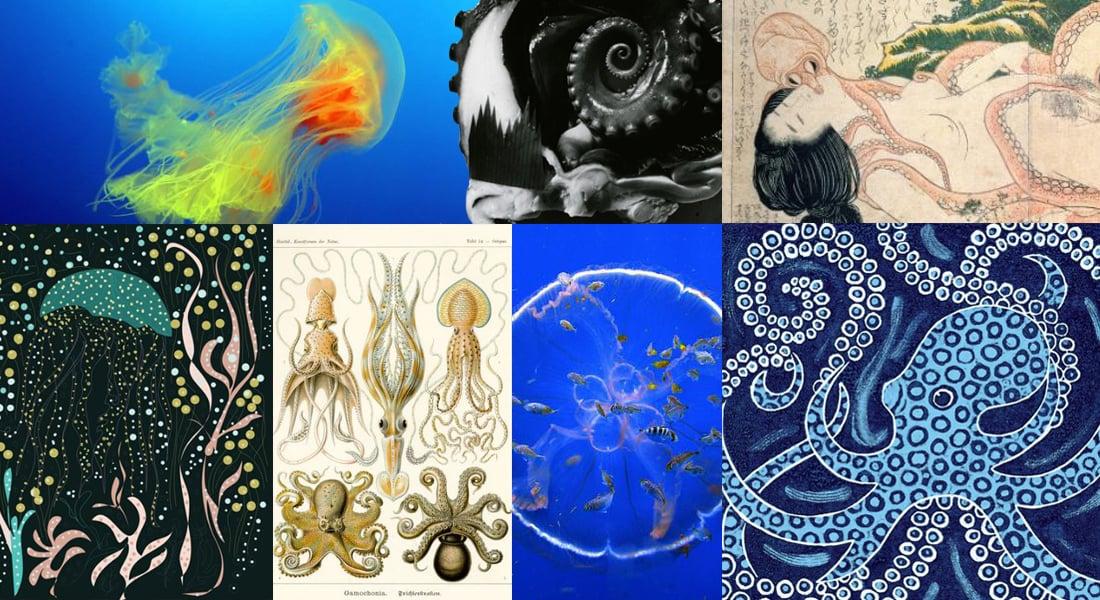 sea-octopus-squid-ocean-fish-shunga