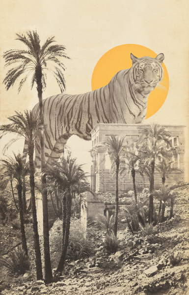 Giant Tiger in Ruins and Palms, Bodart, Florent  Private Collection image montage of a gigantic tiger over a temple with a big yellow sun in the background © Florent Bodart  Bridgeman Images 6335321