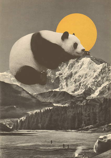 image of a panda resting on top of a mountain, big yellow sun on the background Pandas Nap into Mountains, Bodart, Florent  Private Collection  © Florent Bodart  Bridgeman Images  6203930